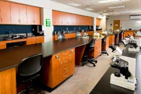 Laminate Hamilton Casework in educational facility