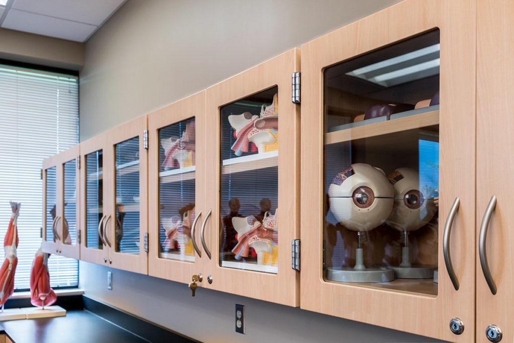 Laminate Hamilton Casework in educational facility