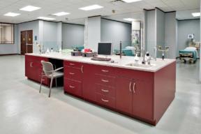 hamilton-casework-hospital-workstation-red