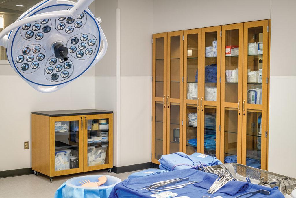 hamilton-casework-for-medical-storage