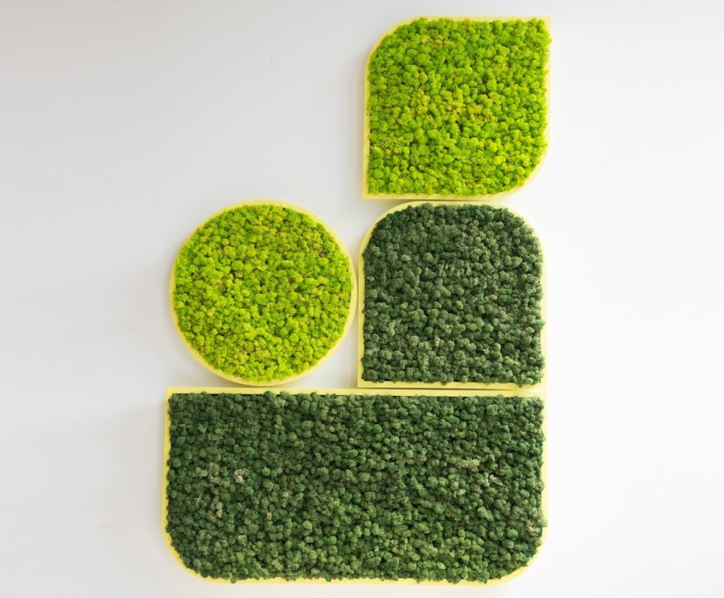 BuzziSpace Biophilic wall solution
