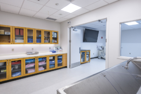Laminate Hamilton Casework for medical storage