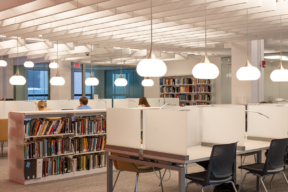 Cantilever Shelving at Learning Library