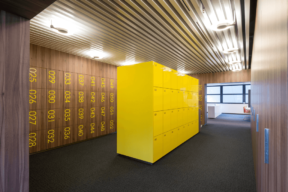 Temporary Use Lockers with graphic numbers on wood laminate - Personal Storage Lockers